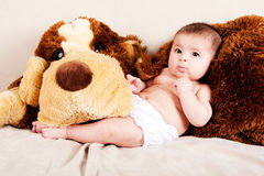 Baby with dog. Cute Caucasian Hispanic unisex baby in arms of a big brown stuffed dog laying on couch stock photography
