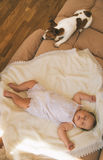 Baby and dog Royalty Free Stock Photo