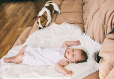 Baby and dog Royalty Free Stock Photos
