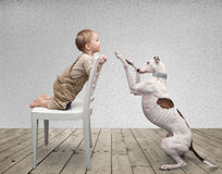 Baby and dog Royalty Free Stock Image