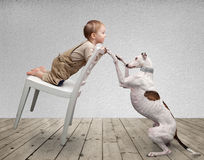 Baby and dog Stock Image