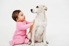 Baby and dog pet. Sitting stock photos