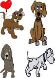 Baby dogs Stock Images