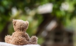 Baby doll, brown Bear sitting on the wooden table in the garden at home. Baby doll brown bear sitting wooden table garden home toy play decoration fluffy hairs royalty free stock photography