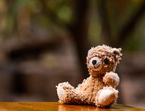 Baby doll, brown Bear sitting on the wooden table in the garden at home. Baby doll brown bear sitting wooden table garden home toy play decoration fluffy hairs stock images