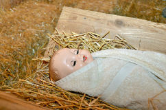 Baby doll in manger Stock Image