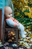 Children`s toy in autumn garden royalty free stock photos