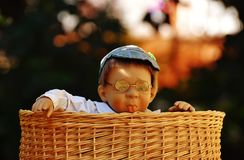 Baby Doll Wearing Eye Glasses Inside the Brown Wicker Basket Royalty Free Stock Images