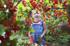 Baby door rode aalbes Stock Afbeeldingen