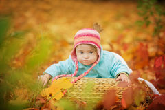Baby with Down syndrome is resting in autumn forest Stock Photography