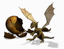 Baby Dragon - with clipping path royalty free illustration