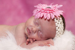 Baby dreaming. Little newborn in art type pose. Appears to be smiling in her sleep Royalty Free Stock Photo
