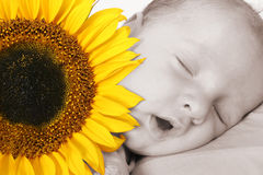 Baby in dreamland royalty free stock photos