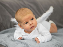 Baby dressed as angel Royalty Free Stock Photography
