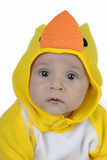 Baby dressed chicken. Baby dressed in a baby chicken costume Stock Image