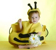 Baby dressed up like a bee royalty free stock photos