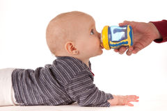 Baby drinking from beaker. Side view of cute baby girl drinking from beaker or cup held by parent, isolated on white background stock images