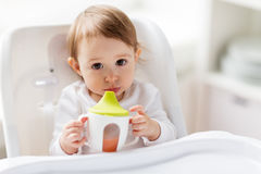 Baby drinking from spout cup in highchair at home Stock Photo