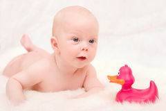 Baby with duck Stock Images