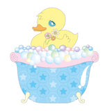 Baby duck in bathtub. Baby duck in bubble bathtub,  isolated on white background Stock Images