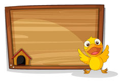 A baby duck in front of a wooden board Stock Photo