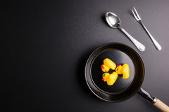 Baby ducks rubber duck in a frying pan  isolated on blac Royalty Free Stock Image