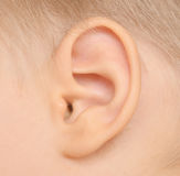 Baby ear. Close up of baby ear royalty free stock image