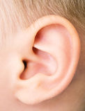 Baby ear stock photos