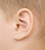 Baby ear Royalty Free Stock Photography