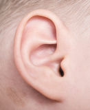 Baby ear Royalty Free Stock Images