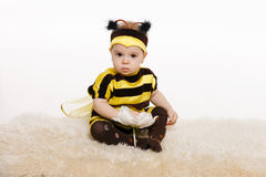 Baby earing bee costume sitting on the floo Stock Image
