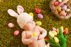 Baby Easter bunny Stock Image
