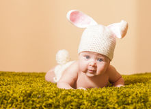 Baby Easter bunny Stock Photo