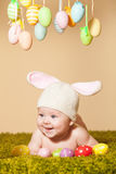 Baby Easter bunny Royalty Free Stock Photos