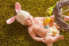 Baby Easter bunny Royalty Free Stock Images