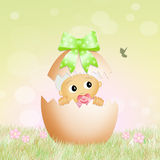 Baby in the Easter egg Royalty Free Stock Photos