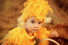 Baby in Easter nest. Child dressed as a chicken sitting in the nest royalty free stock photo