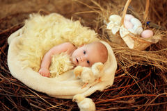 Baby in Easter nest. Child lies in Easter nest with chicks royalty free stock images