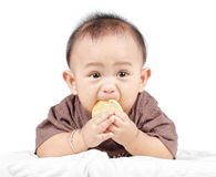 Baby is eating Stock Photo