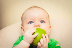 Free Baby Eating Apple Royalty Free Stock Photography - 20994217