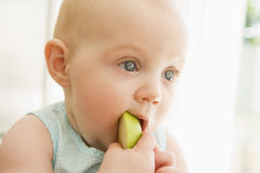 Baby eating apple indoors Royalty Free Stock Photos