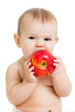 Baby eating apple, isolated on white Royalty Free Stock Photography