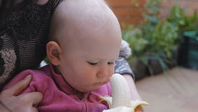 Baby eating banana from hands of mother stock video