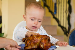 Baby eating a big grilled chicken. One year old baby boy eating a big grilled chicken Royalty Free Stock Images