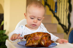 Baby eating a big grilled chicken. One year old baby boy eating a big grilled chicken Royalty Free Stock Photos