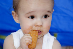 Baby eating a biscuit Royalty Free Stock Photos