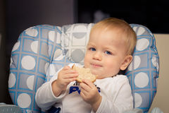 Baby eating bread. Baby in high chair eating bread Stock Photo