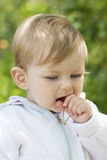 Baby eating cherry Royalty Free Stock Photos