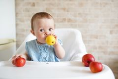 Baby eating fruit. Little girl biting yellow apple sitting in white high chair in sunny kitchen. Healthy nutrition for kids. stock photos