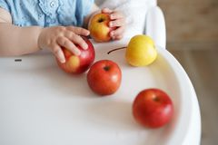 Baby eating fruit. yellow and red apples in little girl`s hands in sunny kitchen. Healthy nutrition for kids. Solid food for stock images